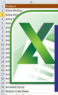 Služba Excel24 |